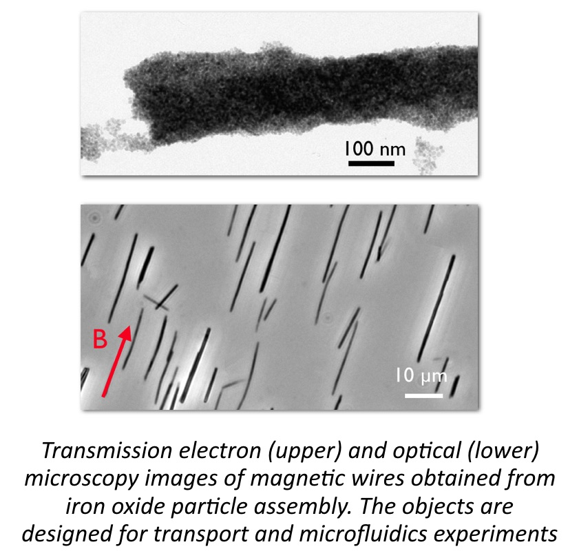 Microscopy images of magnetic wires